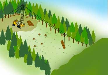 架線集材のイメージ図 林業就業支援ナビさまより