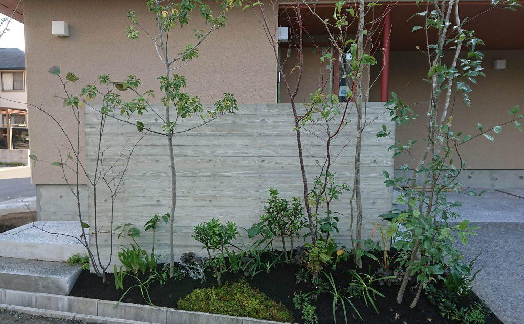 杉型枠打ち放し仕上げの塀と植栽の画像